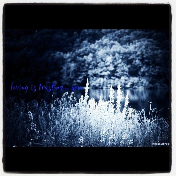 20121216-071112.jpg